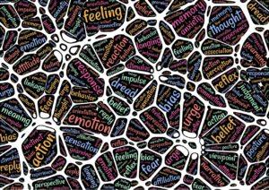 mental, human, experience